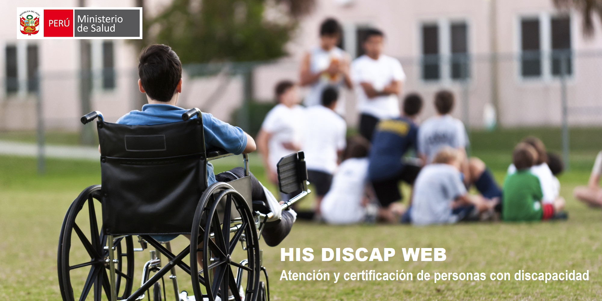 HIS DISCAP WEB reporte estadístico