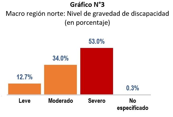 Gráfico estadístico del Registro Nacional de la Persona con Discapacidad por nivel de gravedad, donde el 53% tiene discapacidad severa