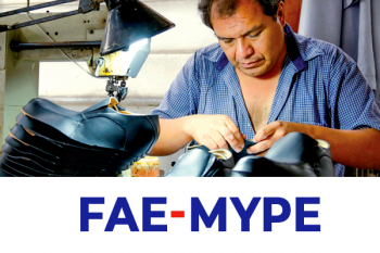 imagen de un zapatero trabajando con cuero y una máquina de coser