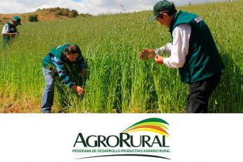 dos agricultores trabajando en sus campos de cosecha